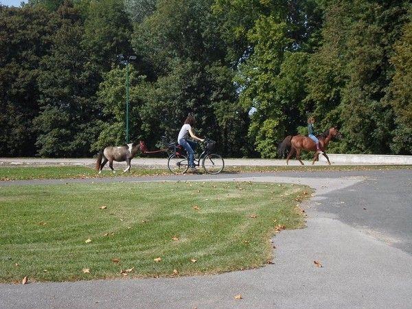 le parc du chteau daramont - Chateau D Aramont Verberie Mariage